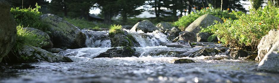 Una dintre cele mai preţioase resurse naturale ale Europei. România deţine 60% din rezervele de apă minerală ale Europei