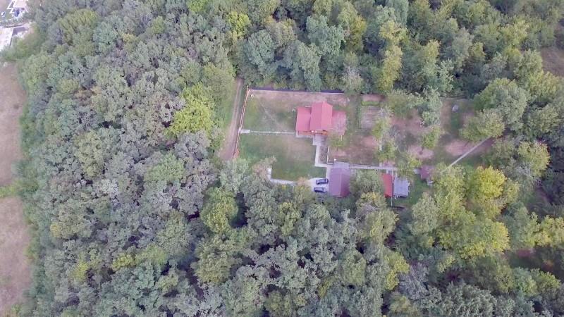 ABUZURI URBANISTICE. O pădure protejată a fost pusă la pământ pentru a construi un cartier de lux.