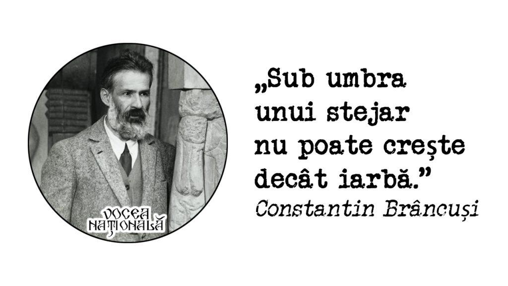 citat de Constantin Brâncuși